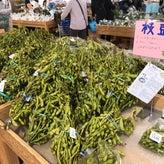 豆はなのリアル京都暮らし☆ヨ~イヤサ~♪