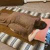 福島区深夜マッサージ、妊婦マッサージの画像