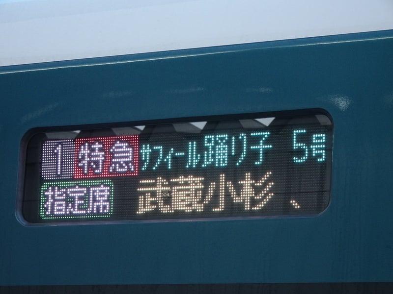 鉄道 E261系 サフィール踊り子号 2020 1024 02
