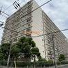【京橋第一コーポ・最上階角部屋・フルリノベ】内覧レポの画像