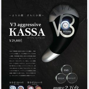 【全国限定2万台】V3アグレッシブカッサの画像