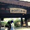 熊本県.阿蘇郡 立ち寄り湯にて【黒川温泉 やまびこ旅館】の画像