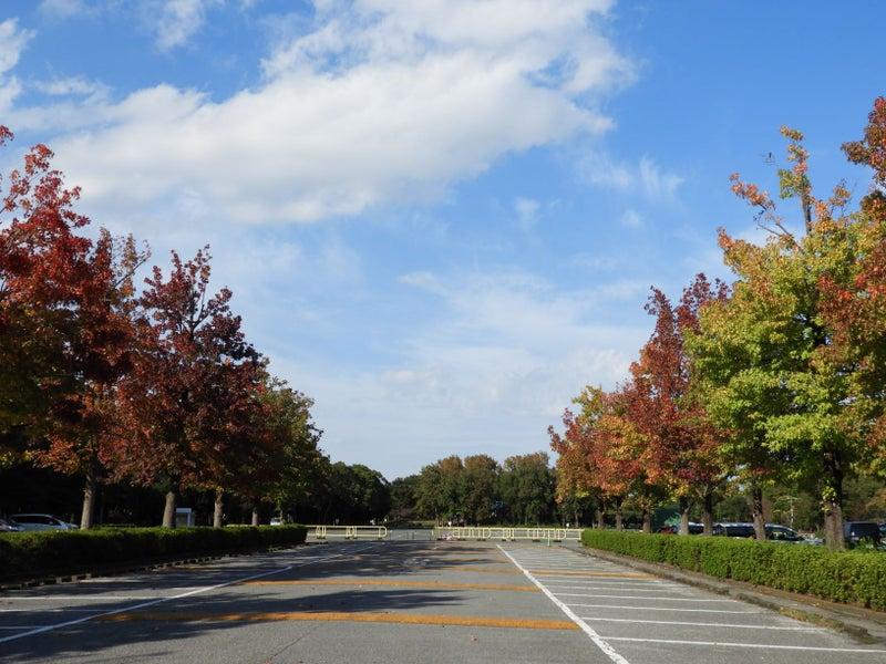 駐 水 車場 公園 元 鑓水公園|八王子市公式ホームページ