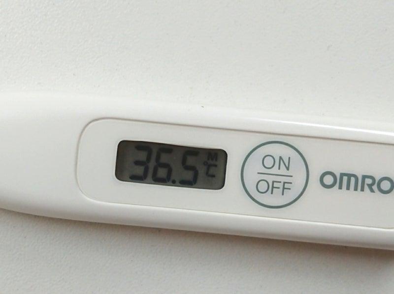 ホット フラッシュ 体温