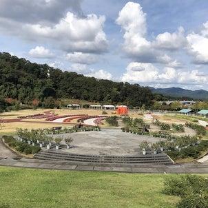 秋のお花見2020(越後丘陵公園)の画像