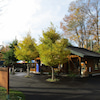10月29日(木)動物の展示時間についての画像