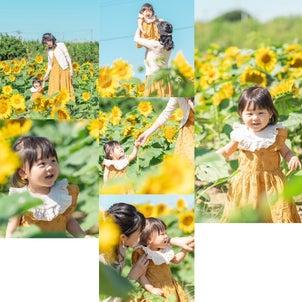 ひまわり♡の画像