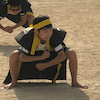 小学校体育参観の画像