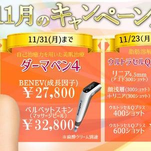 11月キャンペーン&ポイントカード規約一部変更のお知らせの画像