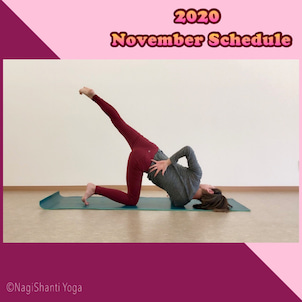 11月のスケジュール / November'20 scheduleの画像