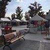 アロハアマパーク 無事終了しましたの画像