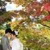 ウェディングフォト~藤田記念庭園~の画像