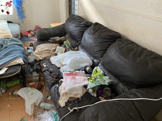 猫屋敷になってしまったお部屋清掃(ビフォーアフター)名古屋市中心にお部屋清掃