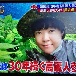 画像 韓国在住!気になっていた女性がテレビ出演されました♪ の記事より 4つ目