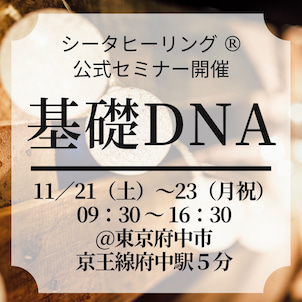 ◆11月21(土)〜23(月祝)基礎DNA講座を開催しますの画像