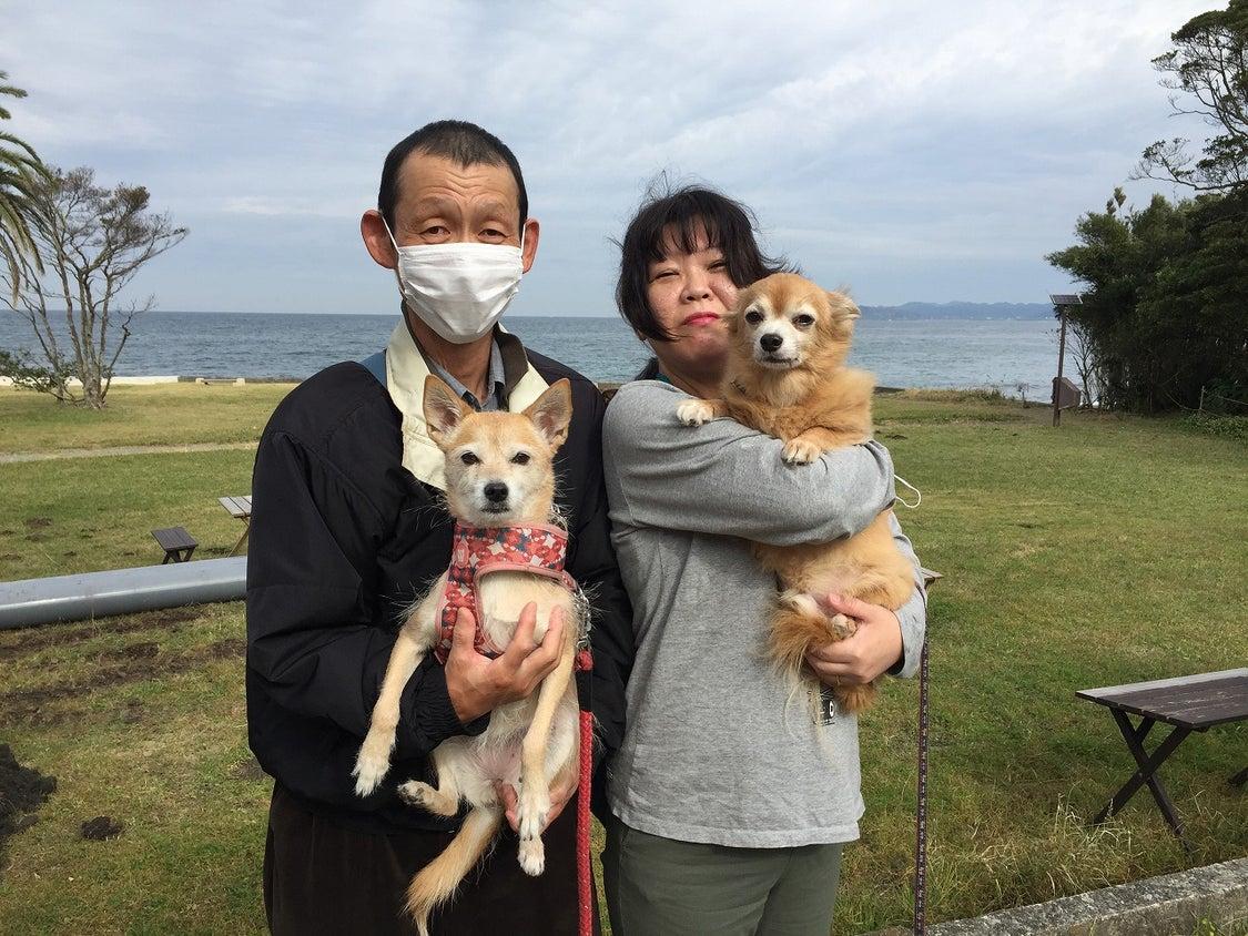2020.11.5 ご宿泊のワンちゃん達の笑顔☆の記事より
