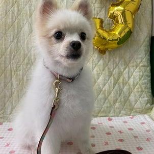 Happybirthday!!!の画像