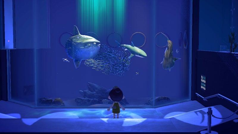 森 魚 あつ 深海