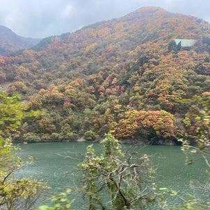 飛騨高山&白川郷の画像