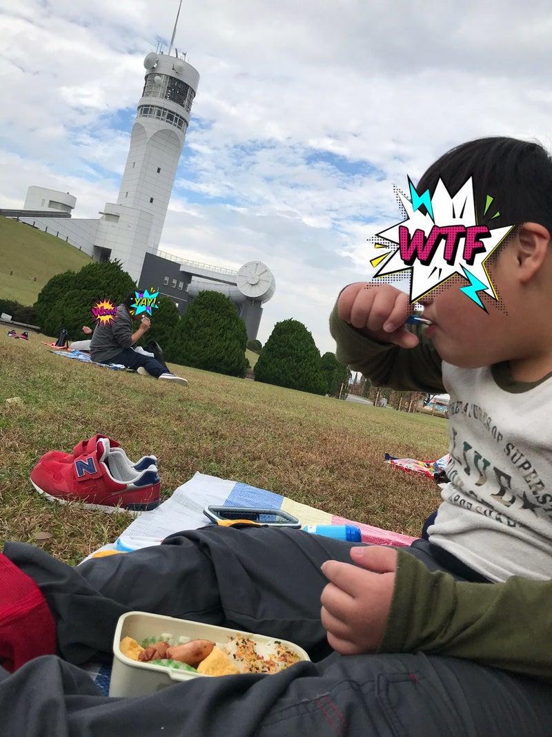 o1080144014847473247 - ♪11月7日(土)♪toiro戸塚