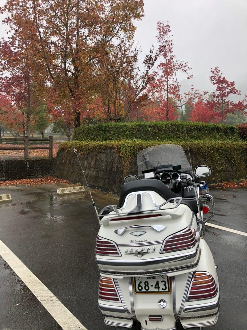 雨雲 福岡 レーダー 県