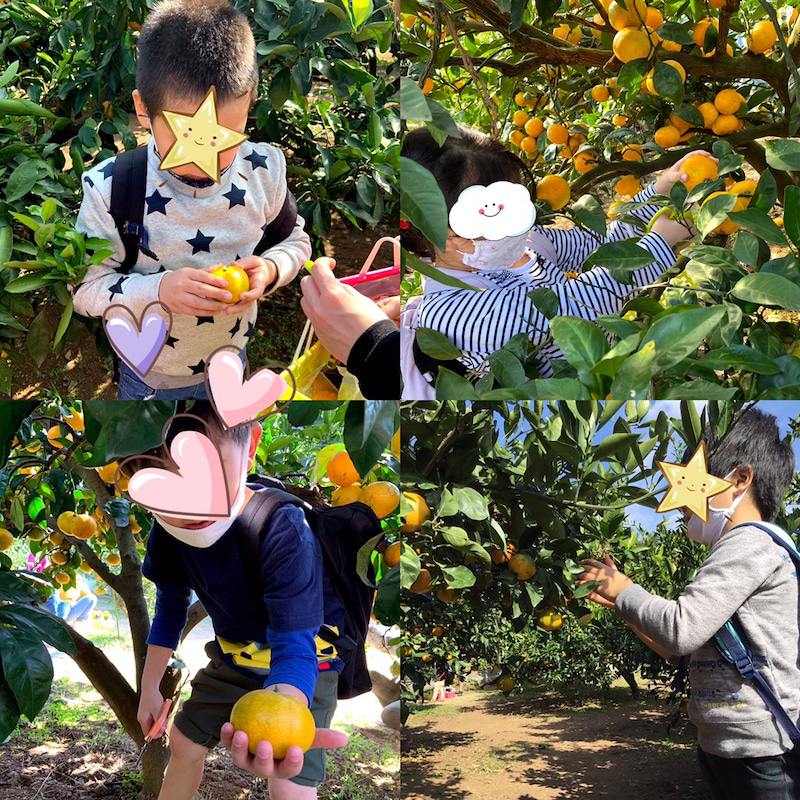 o1080108014848050898 - ♪11月8日(日)♪toiro戸塚