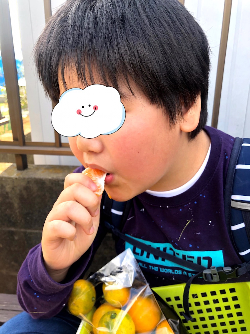 o1080144014848052143 - ♪11月8日(日)♪toiro戸塚