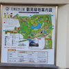 今秋のコスモスめぐり三連発 第三弾 花博記念公園鶴見緑地の画像