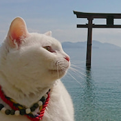 琵琶湖 別荘 反町 反町隆史の私生活エピソードが掘れば掘るほどカッコ良すぎて痺れる (2020年6月28日)