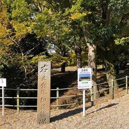 画像 奈良公園で紅葉! の記事より 24つ目