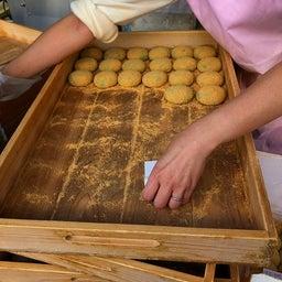 画像 奈良公園で紅葉! の記事より 11つ目
