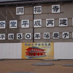 画像 奈良公園で紅葉! の記事より 16つ目