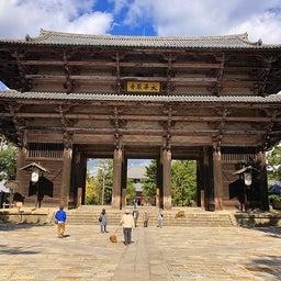 画像 奈良公園で紅葉! の記事より 19つ目