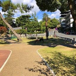 画像 奈良公園で紅葉! の記事より 4つ目