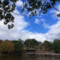 画像 奈良公園で紅葉! の記事より 34つ目