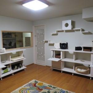 保護猫部屋をご紹介(古民家再生プロジェクト)の画像