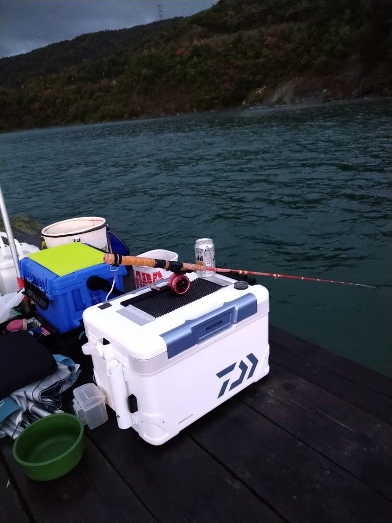 釣果 西森 渡船
