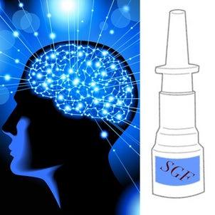 幹細胞培養上清液SGFの点鼻薬とは?認知症予防•改善への画像