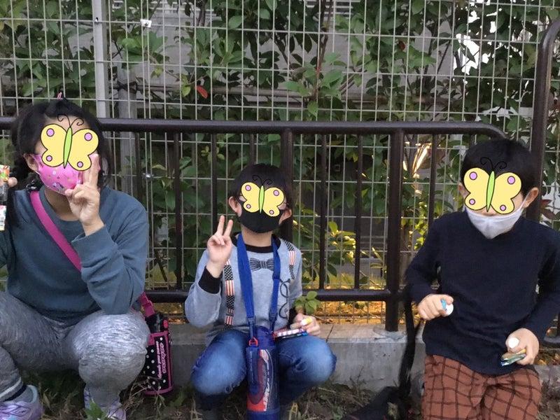 o1080081014849920325 - ♪11月11日(水)♪toiro戸塚