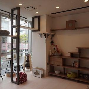保護猫カフェ・ケットシー(横浜)の画像