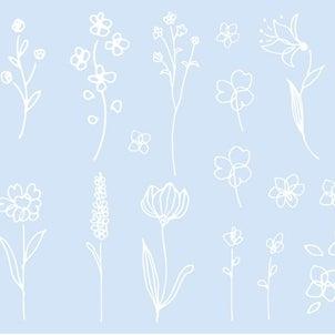 Flowering Plantの画像