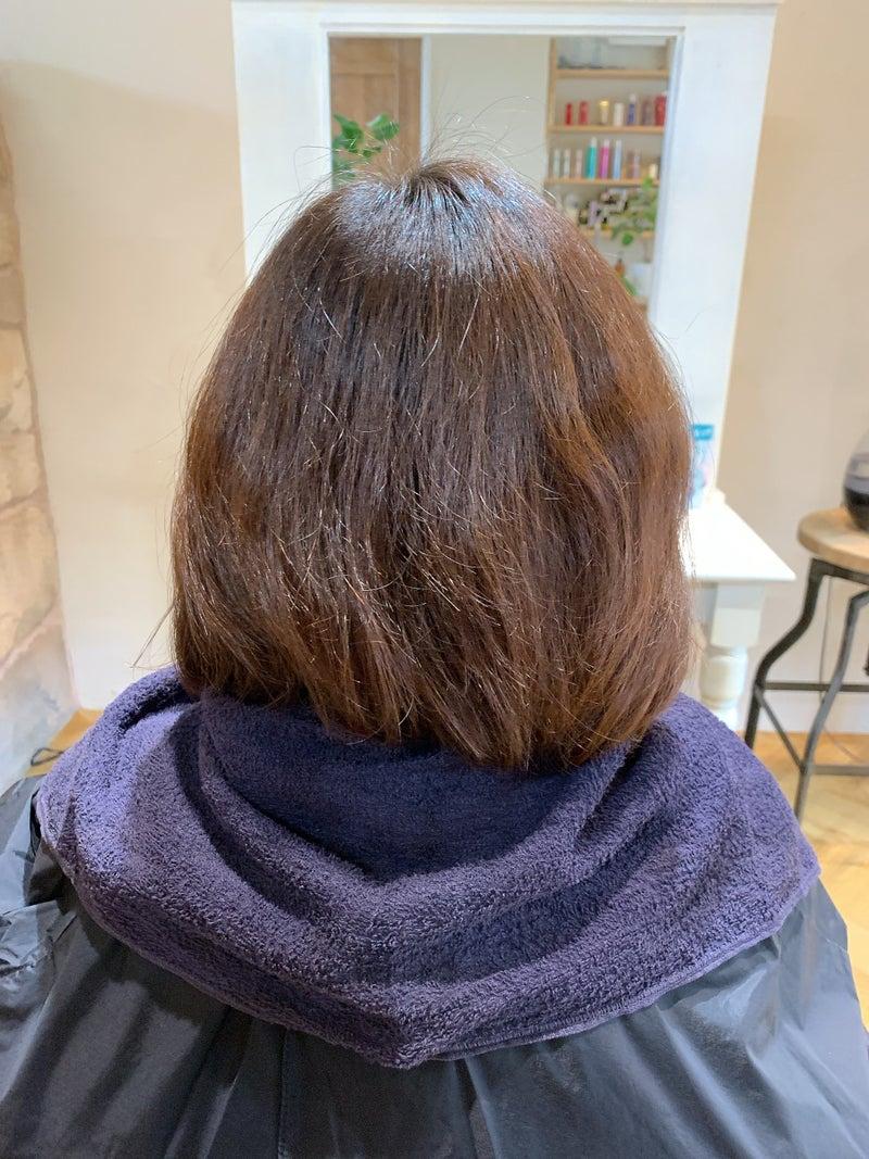 カラー髪質改善