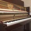 ペトロフピアノ終日調整!@渋谷ホール&スタジオの画像