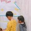 Dream Treeの画像