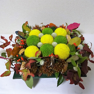 ポンポン菊のデザイン。の画像