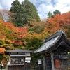 湖東三山 百済寺の素敵な紅葉〜〜!!の画像