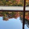 床紅葉と桐生寺社巡りの画像