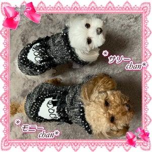 可愛いサリーちゃん&モニーちゃんの画像