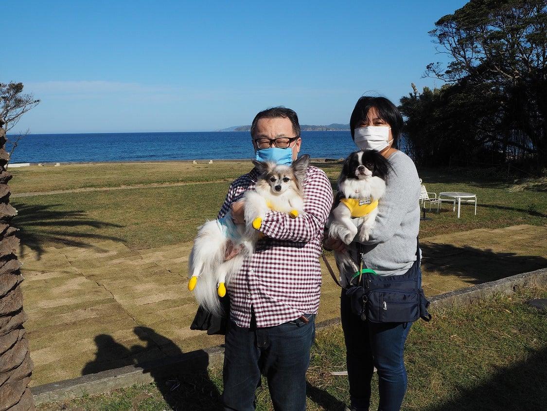 2020.11.15 ご宿泊のワンちゃん達の笑顔☆の記事より