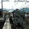大井川鐵道から大井川を臨むの画像